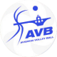 Logo Avignon Volley Ball