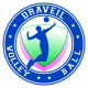Logo Draveil Volley Ball