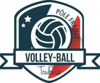 Logo Institut fédéral de Volley-ball