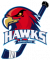 Logo Hawks Angers Rollers