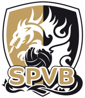 Logo Stade Poitevin Volley-Beach 3