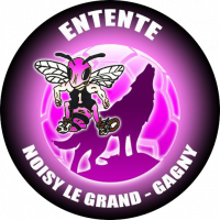 Logo Noisy le Grand Handball 2
