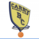 Logo Basket Club Carry le Rouet