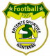 Logo Entente Sportive Nanterre Football 3