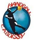 Logo Cercle Athletique Boissy Handball