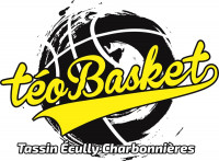 Logo Ecully Basket