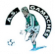 Logo AS Gamaches