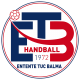 Logo Entente Tuc Balma Handball 2