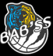 Logo Bessieres Basket Club 2