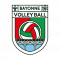 Logo Bayonne Volley-Ball