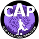 Logo CA Pithiviers