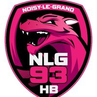 Logo Noisy le Grand Handball 4